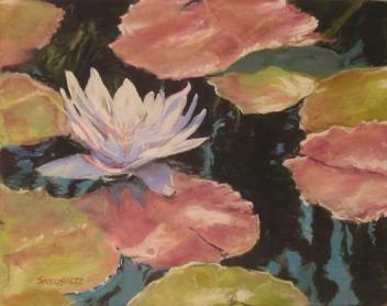 Water Lily in Black (pastel)